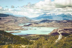 Seenlandschaft im Torres del Paine Nationalpark