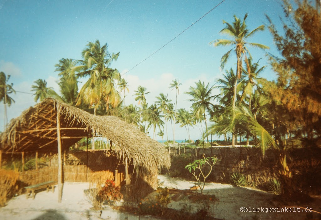 Palmen an Sanzibars Ostküste