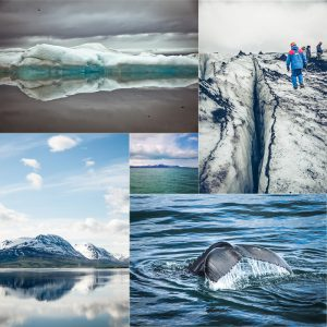 Collage Eisbilder Island