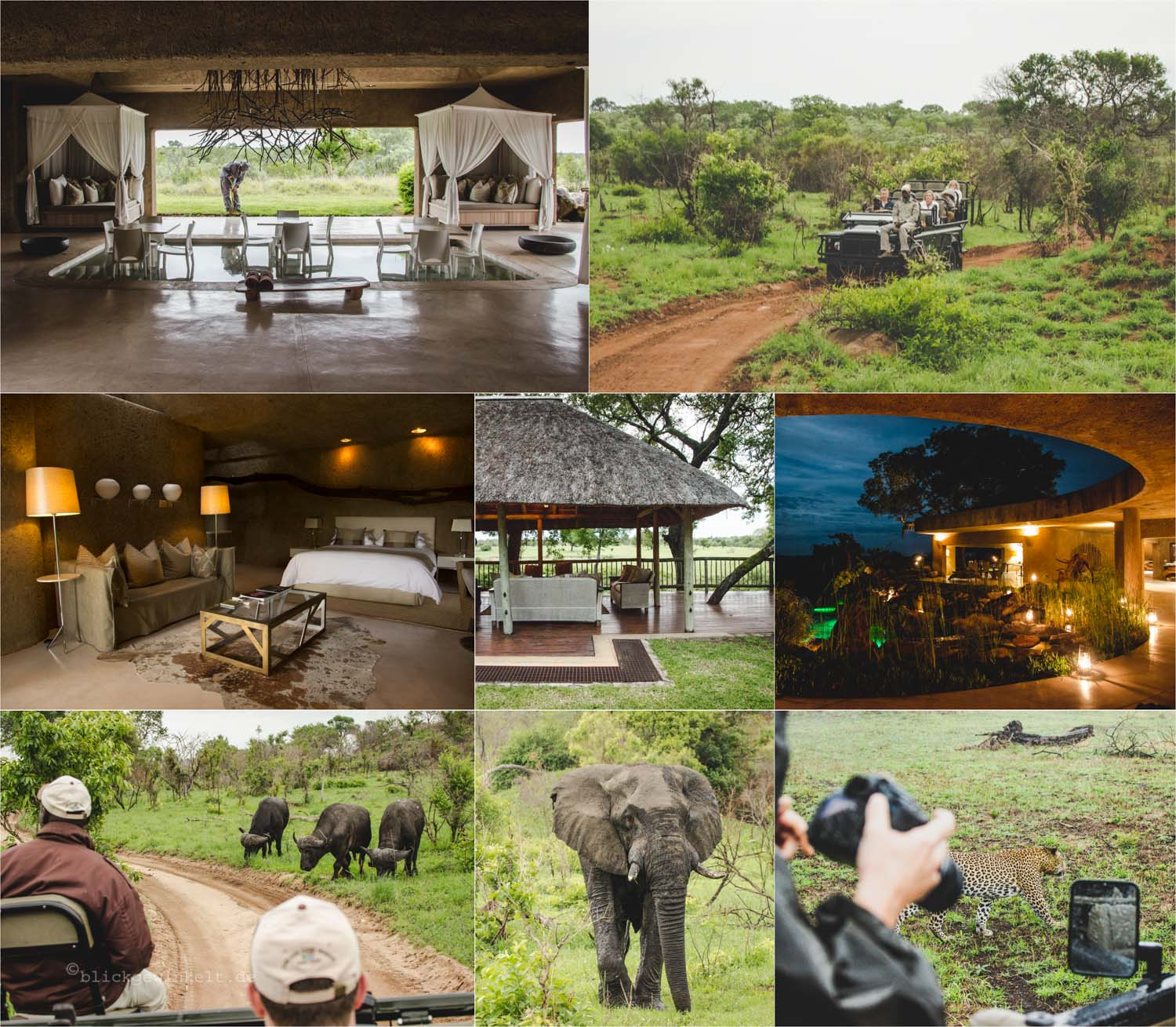 Sabi Sabi Lodges, Bildercollage: Auf Safari in Südafrika