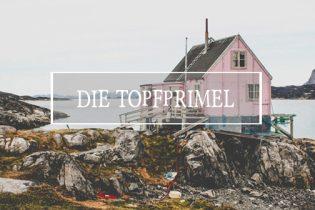 Topfprimel-Pinkhaus