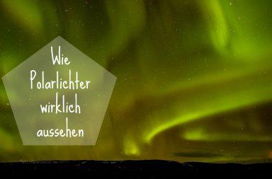 Wie sehen Polarlichter aus? Nordlicht grün-lila