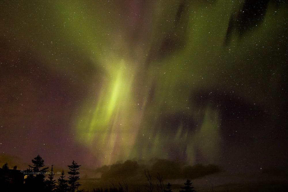 Polarlicht / Nordlicht in Island in lila und grün