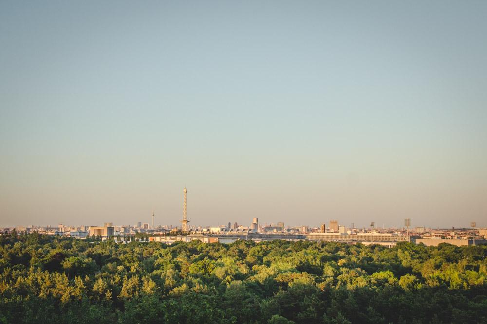 Blick über grünen Wald, im Hintergrund Berlin