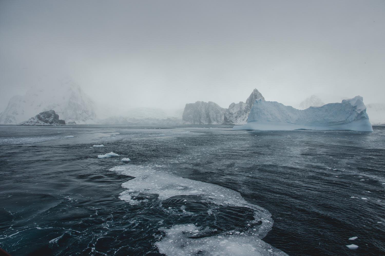 Elephant Island in der Antarktis