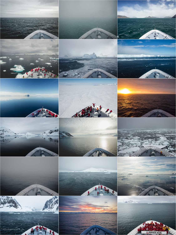 Antarktis-Reise: Collage mit Bildern vor dem Bug