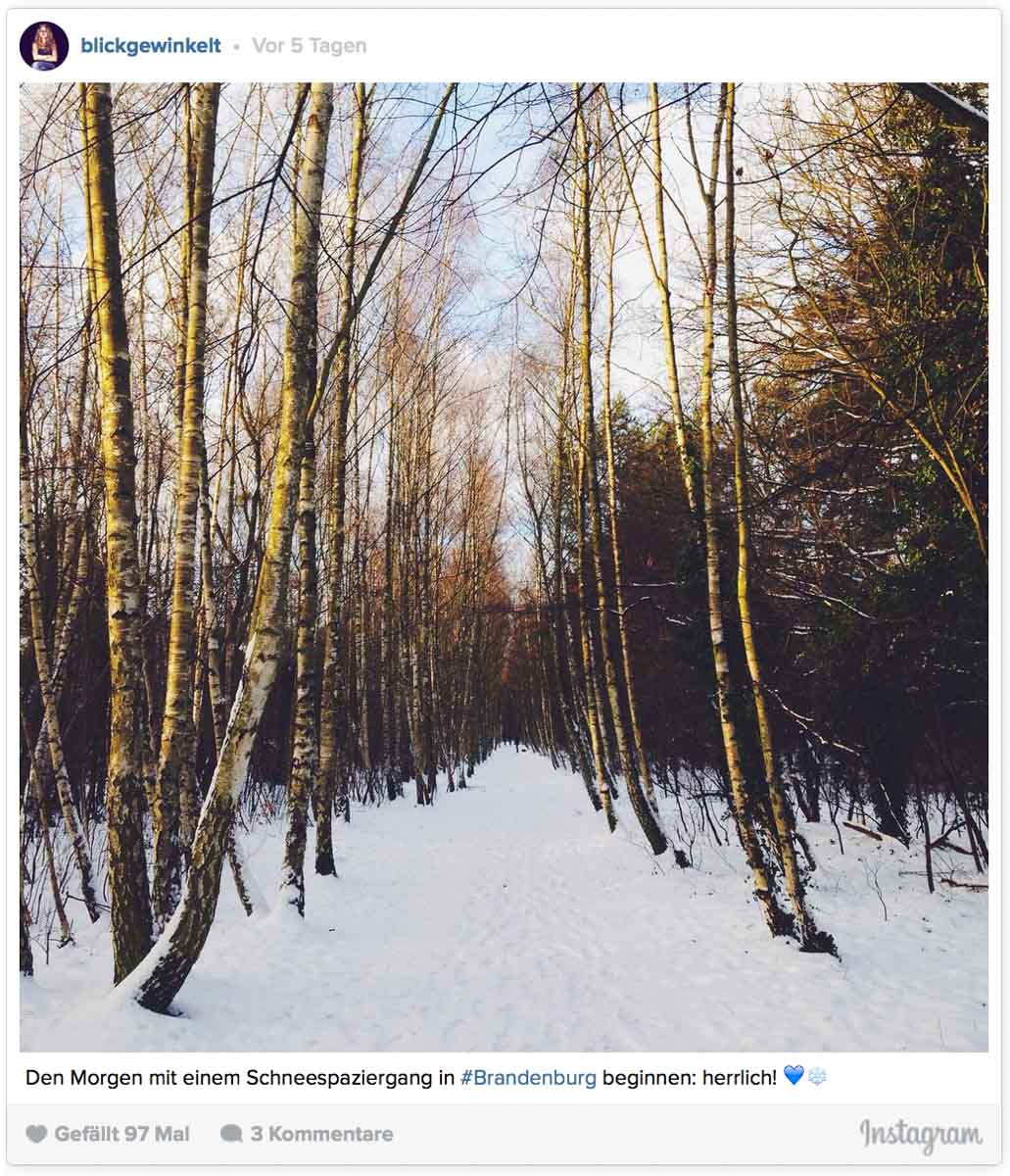 Winterlandschaft Winterwald