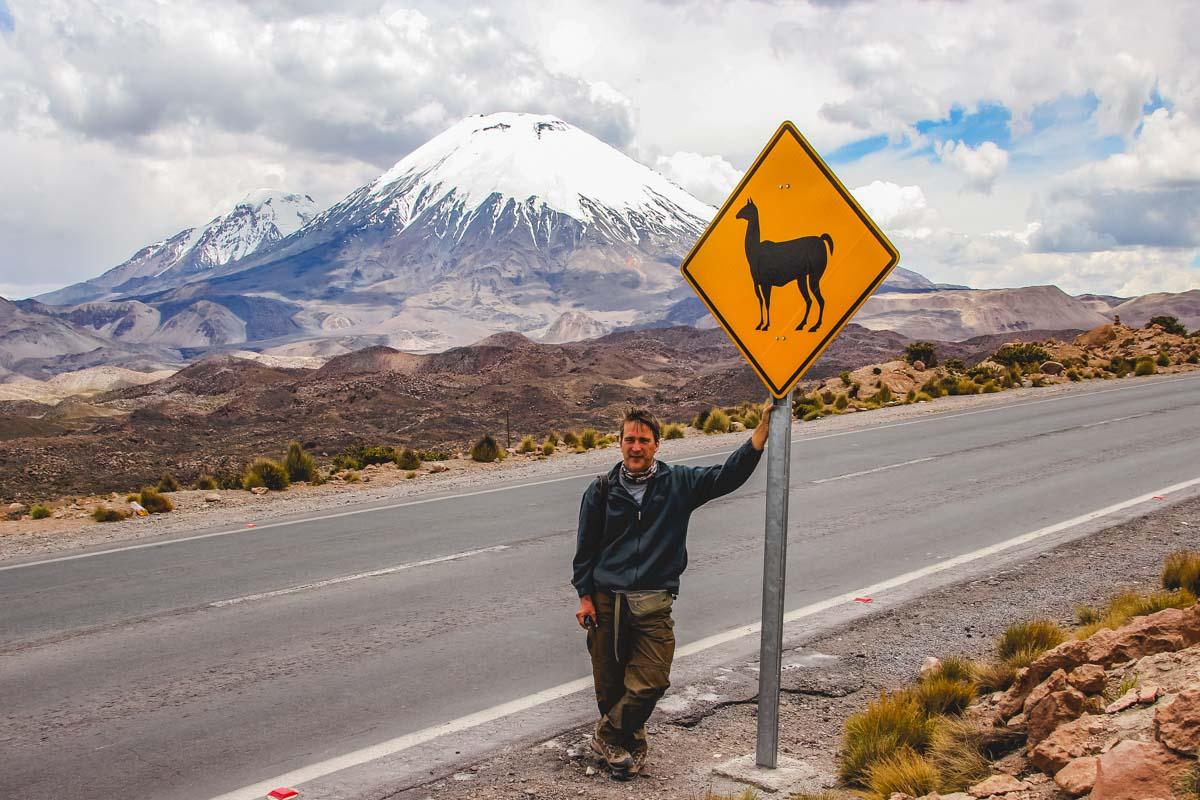 Lama-Verkehrsschild