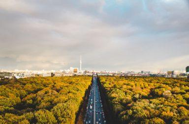 Berliner Tiergarten und Brandenburger Tor