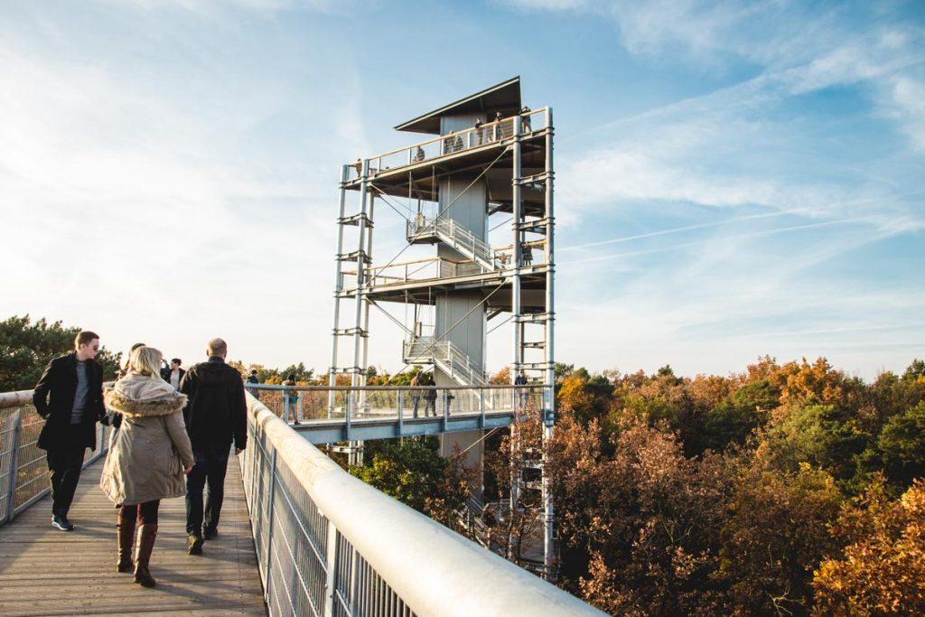 Aussichtsturm Baumkronenpfad Beelitz-Heilstätten