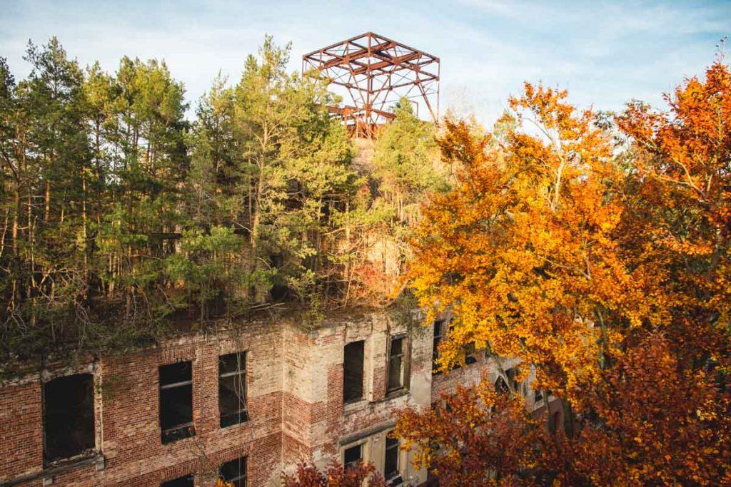 Herbstfärbung der Bäume auf einem zerfallenem Haus