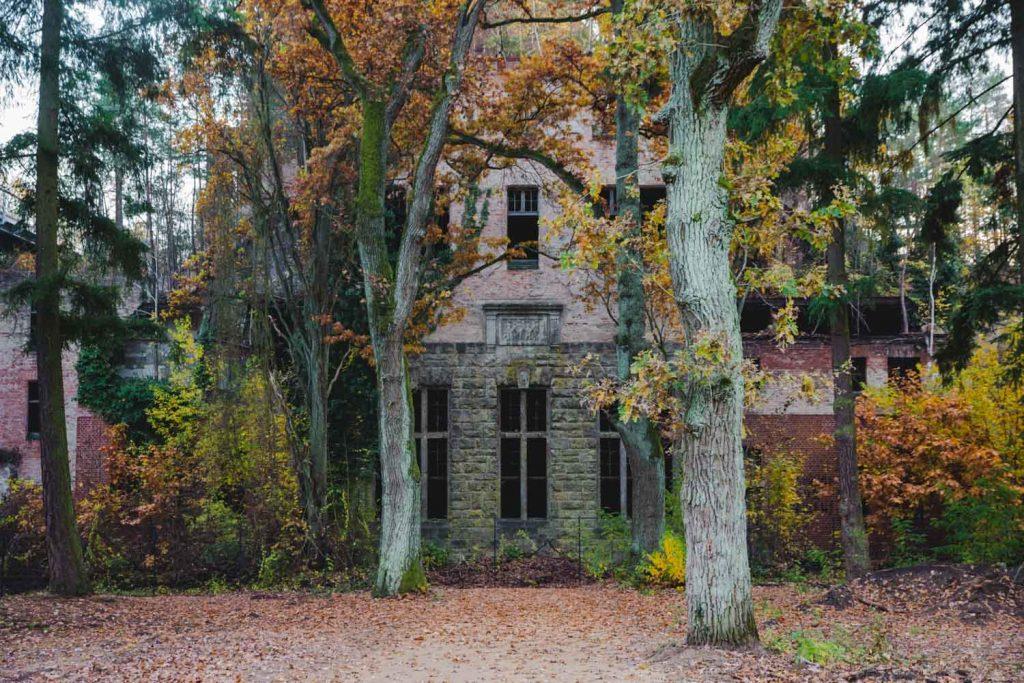 Zugewachsener Eingang vom Frauensanatorium, Beelitz-Heilstätten