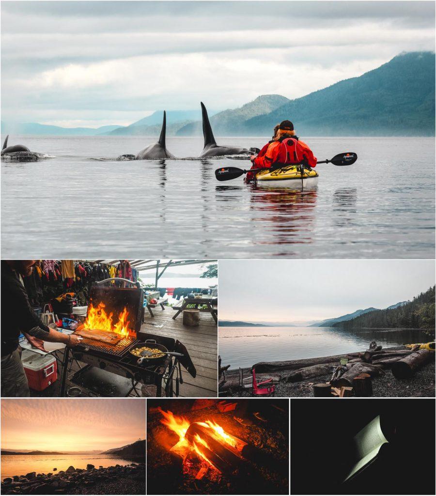 Kajaking mit Orcas auf Vancouver Island