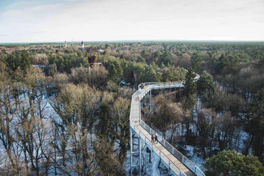 Baumkronenpfad Beelitz-Heilstätten im Winter