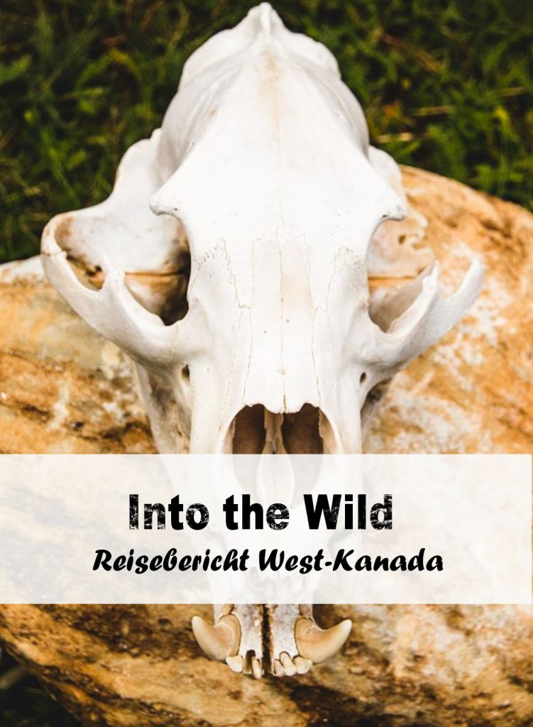 Reisebericht Westkanada: Into the wild
