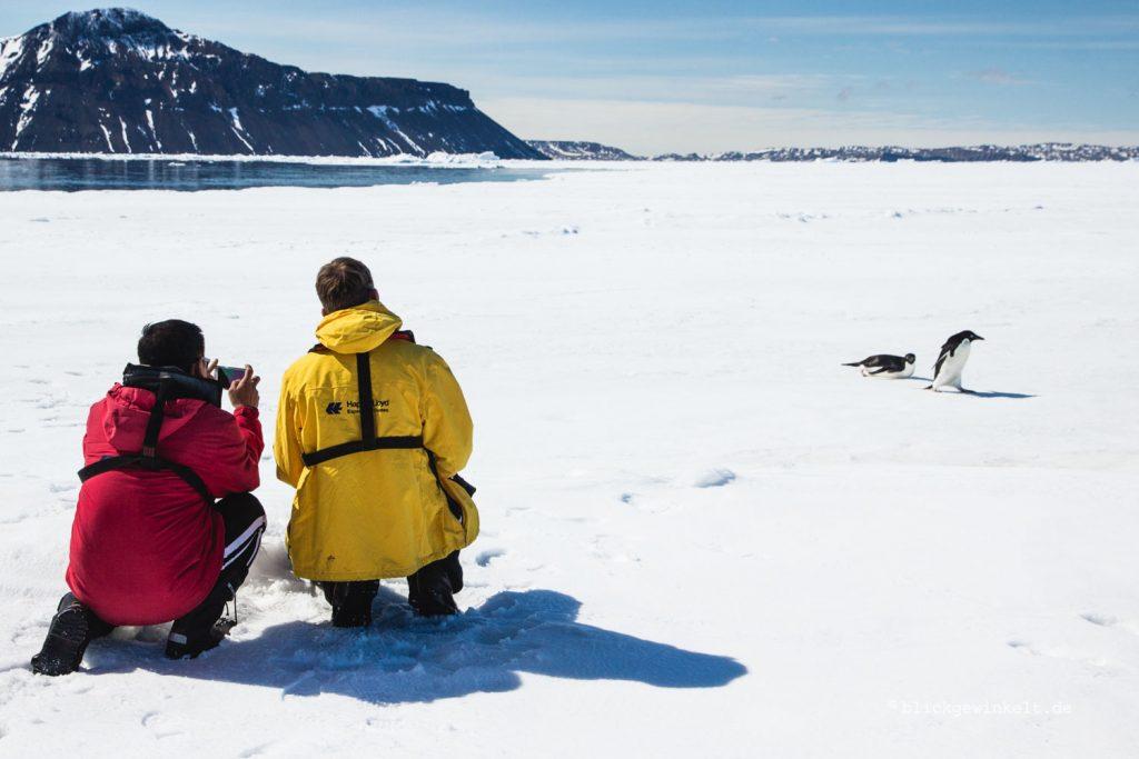 Zwei Expeditionsteilnehmer beobachten Adélie-Pinguine