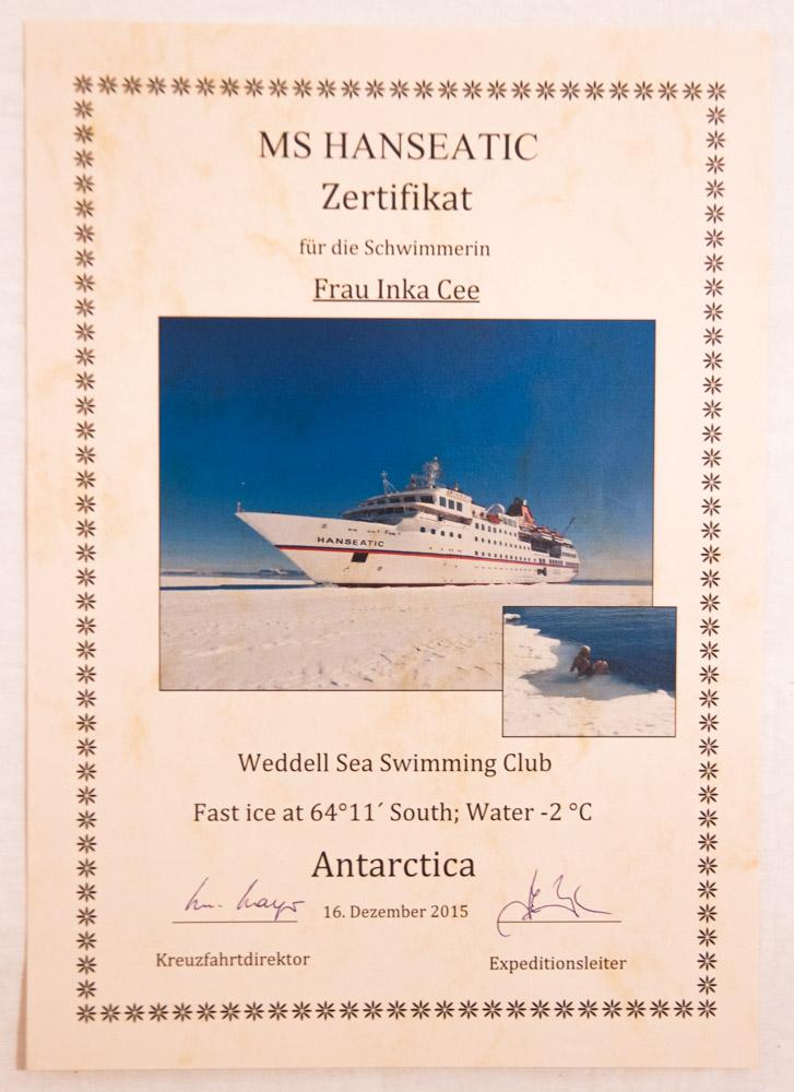 Urkunde für das Schwimmen in der Antarktis
