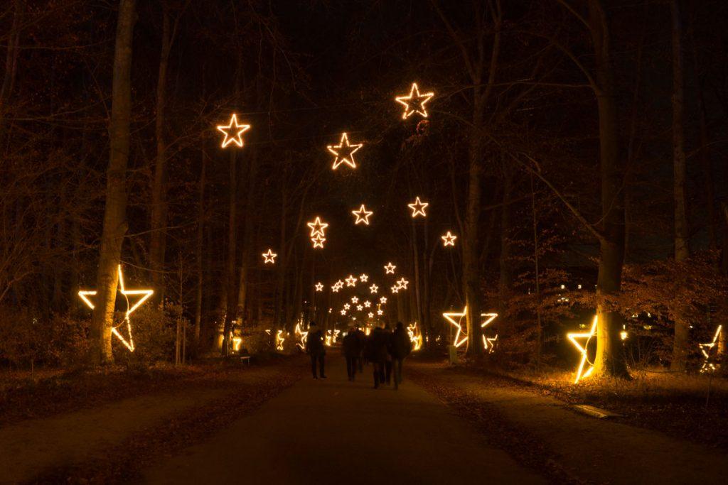 Leuchtsterne Allee