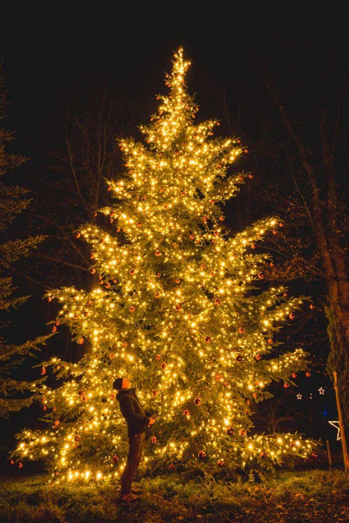 Riesen-Weihnachtsbaum im Christmas Garden Berlin