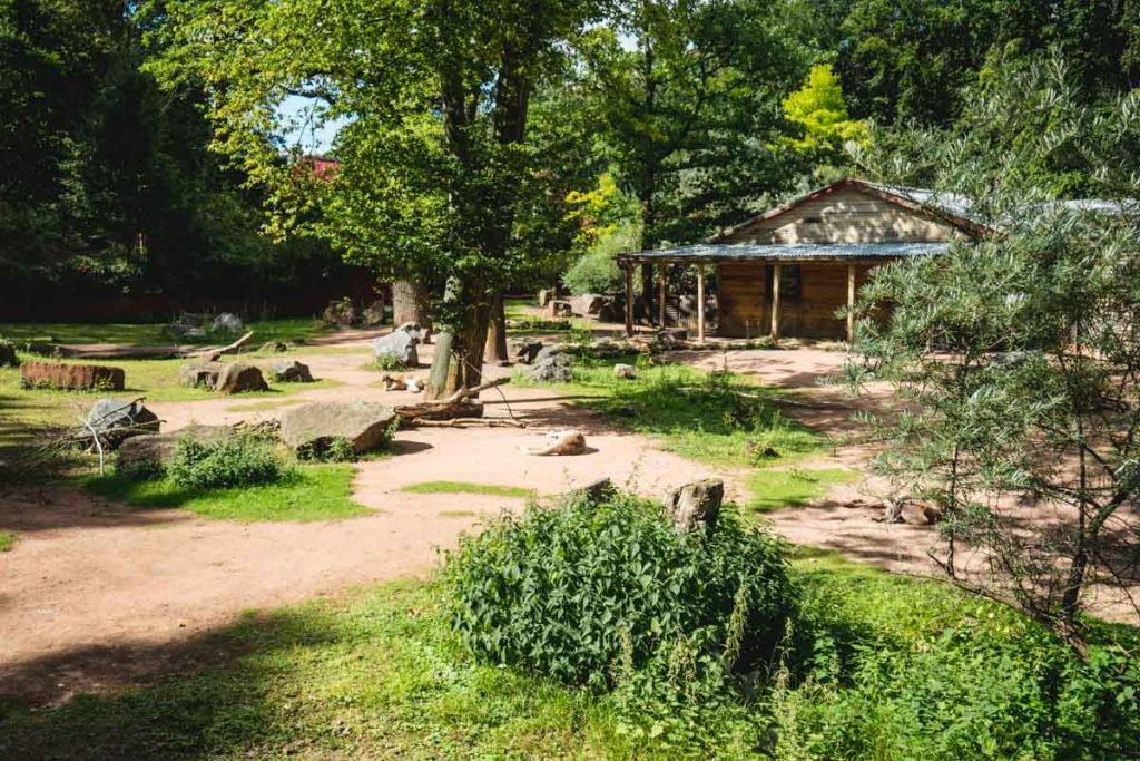 Das Australien im Zoo Hannover