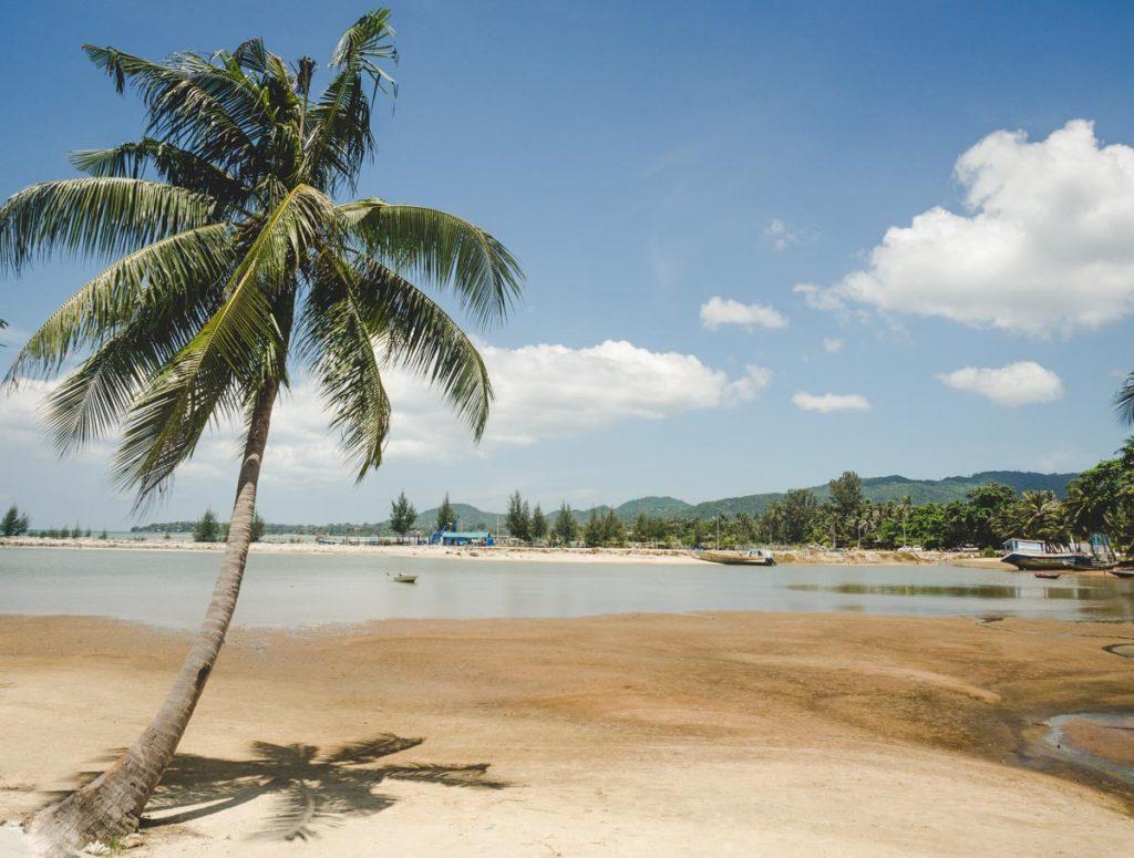 Sand mit Palme und Booten