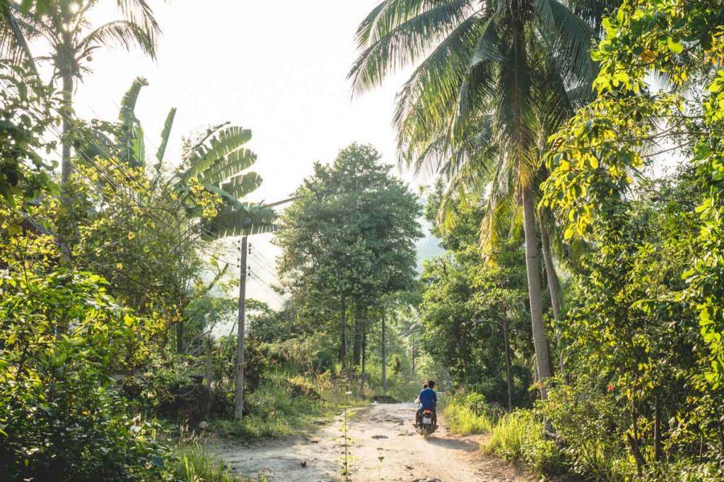 Rollerfahren auf Koh Phangan