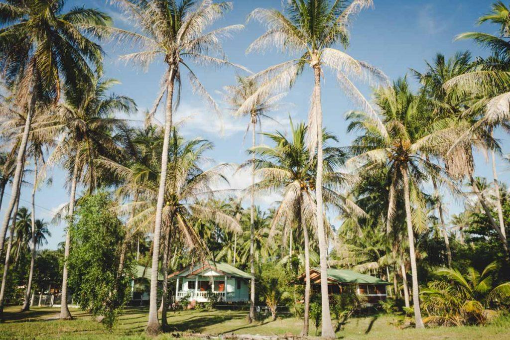 Bungalow zwischen Palmen