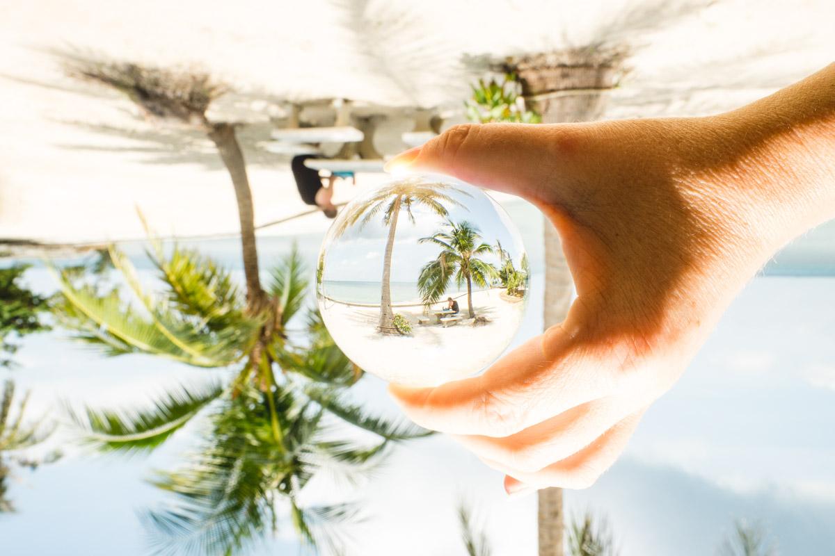 Glaskugel mit Palme