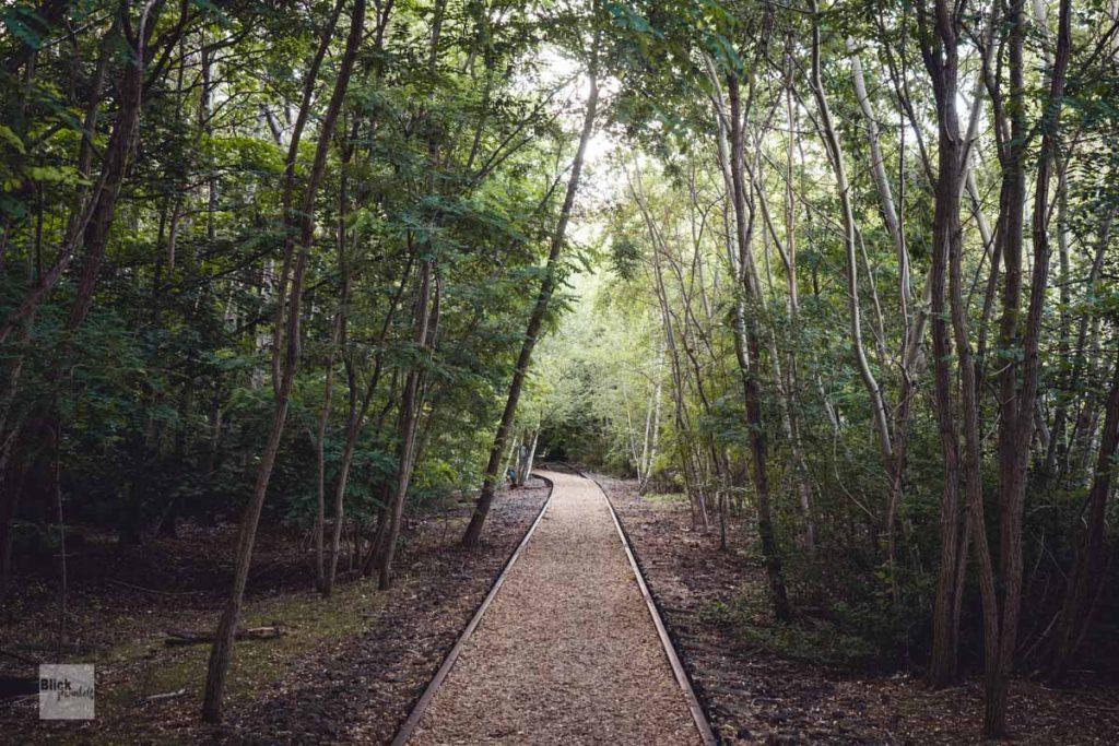 Alte Gleise im Park am Gleisdreieck