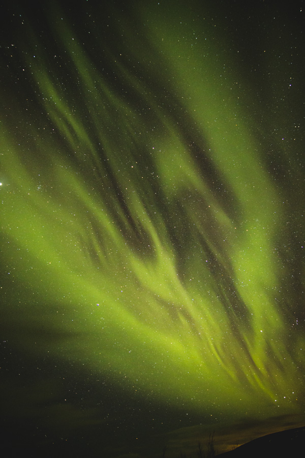 Polarlichter in Island mit Sternenhimmel