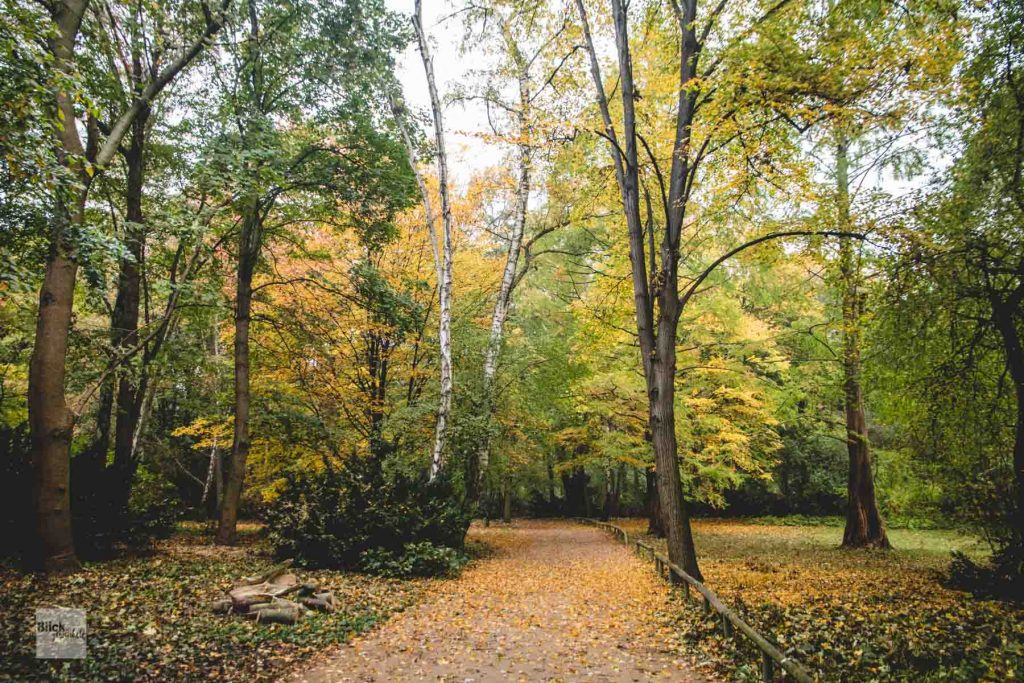 Der Berliner Tiergarten im Herbst.