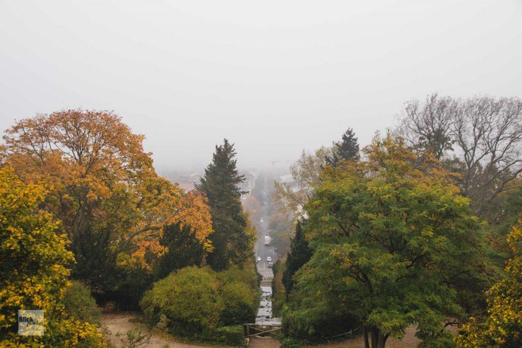 Aussicht vom Kreuzberg über Berlin im Herbst