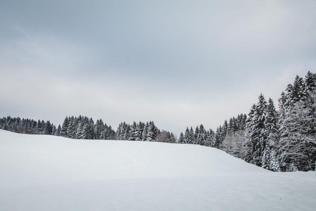 Verschneites Allgäu