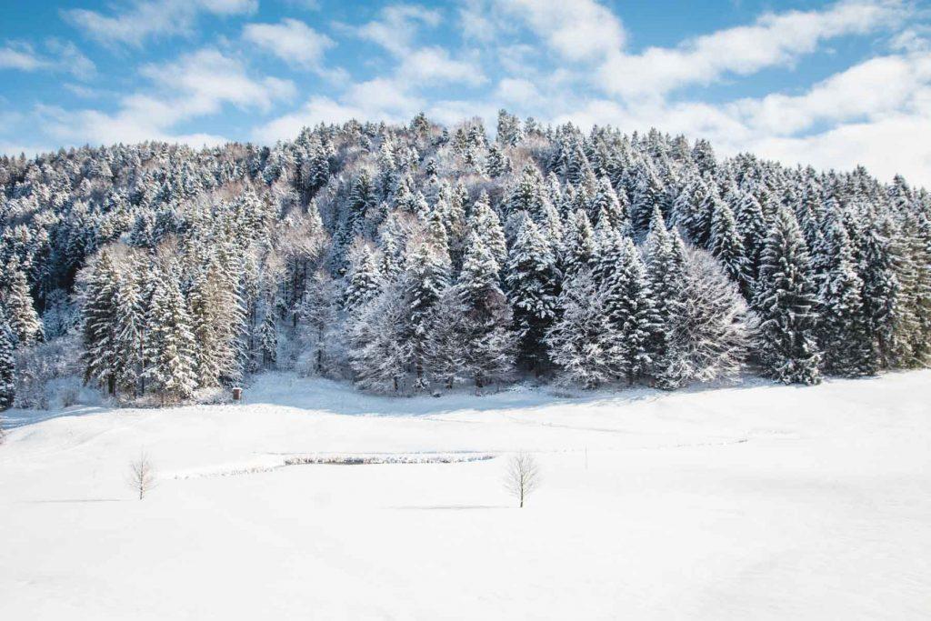 Verschneiter Hügel