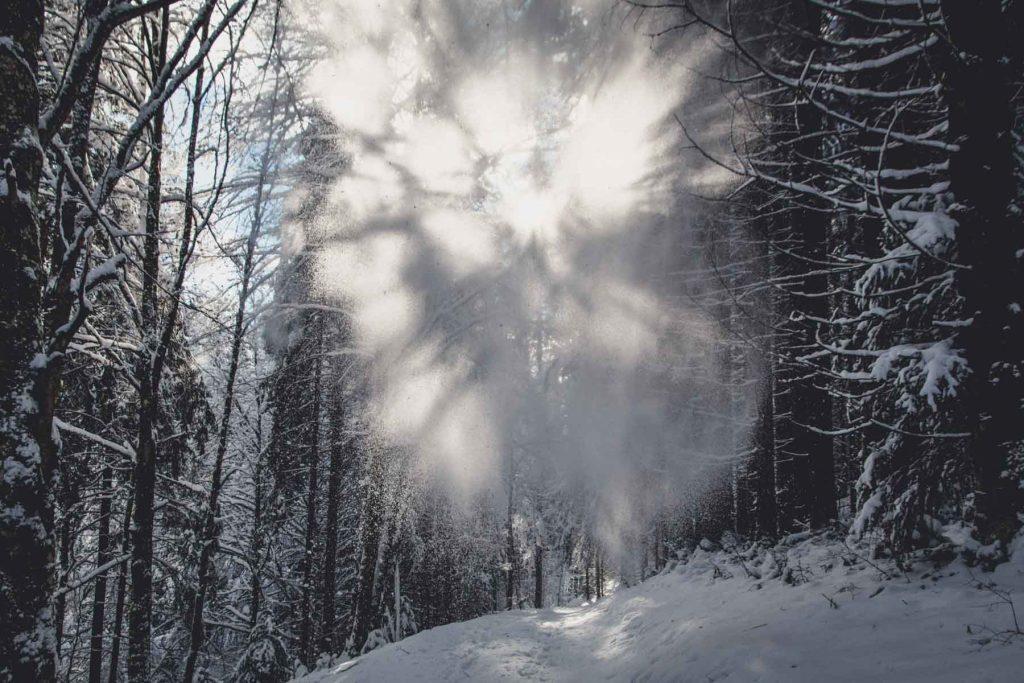 Sonnenlicht bricht sich in Schneekristallen