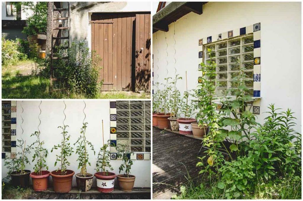 Garage mit bunten Fliesen und Tomaten