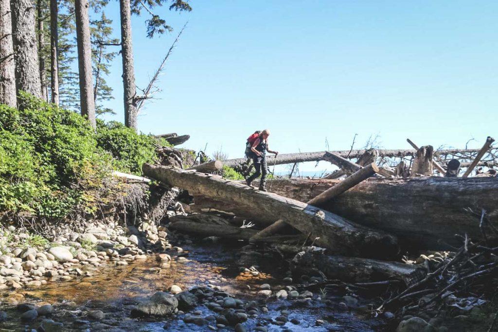 West Coast Trail auf Vancouver Island - Wanderung über Baumstämme