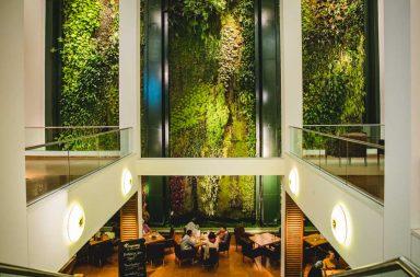 Caferestaurant mit begrünter Wand