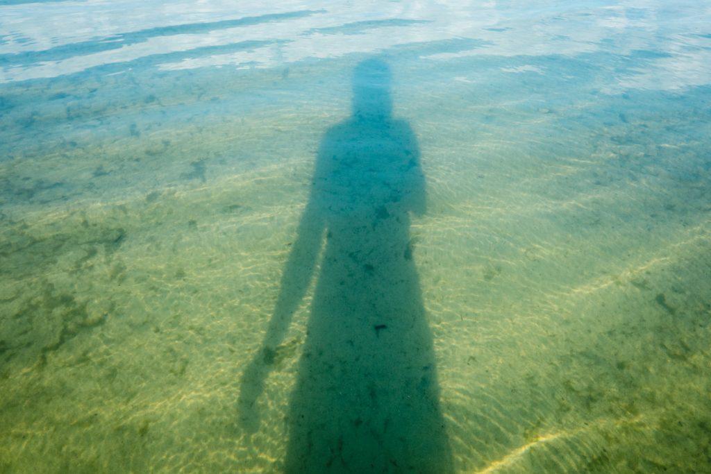 Morgenschwimmen im See
