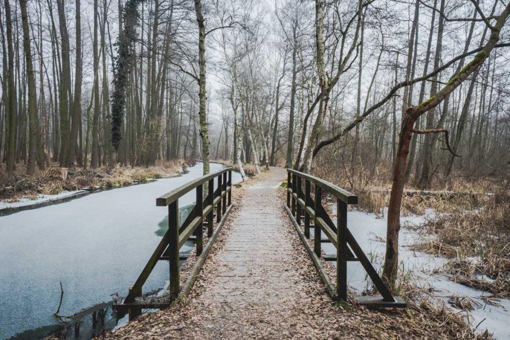Wanderung im Spreewald
