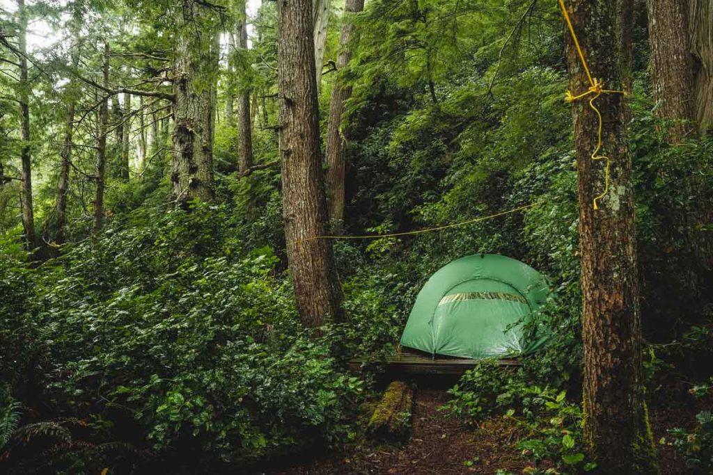Zelten im Regenwald