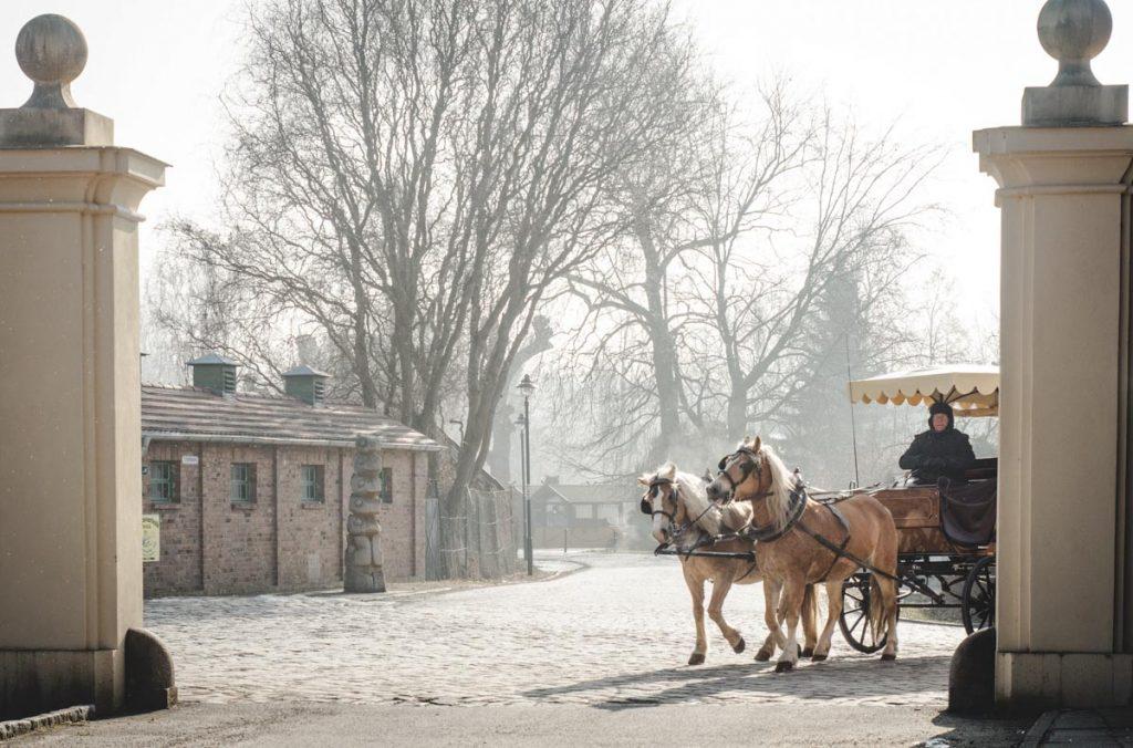 Pferdekutsche am Schloss
