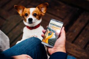 5 Tipps für bessere Urlaubsfotos mit dem Smartphone