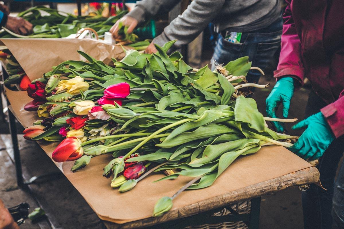 Faire Arbeitsbedingungen Schnittblumen