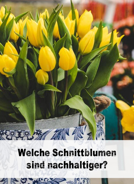 Wie nachhaltig sind Schnittblumen?