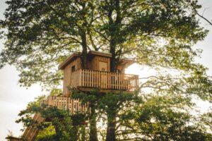Schöner schlafen: Eine Baumhaus-Übernachtung in der Uckermark