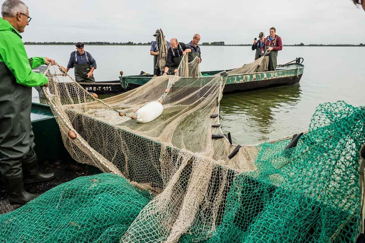 Fischernetze zwischen Booten
