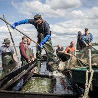 Erlebnisfischen im Westhavelland