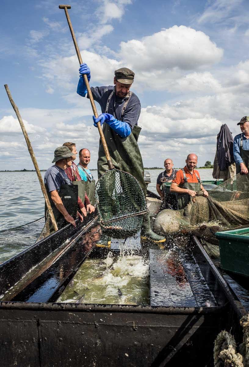 Erlebnisfischen im Welthavelland