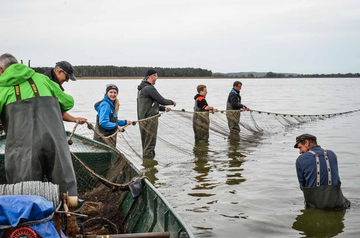 Netzfischen auf dem Gülper See